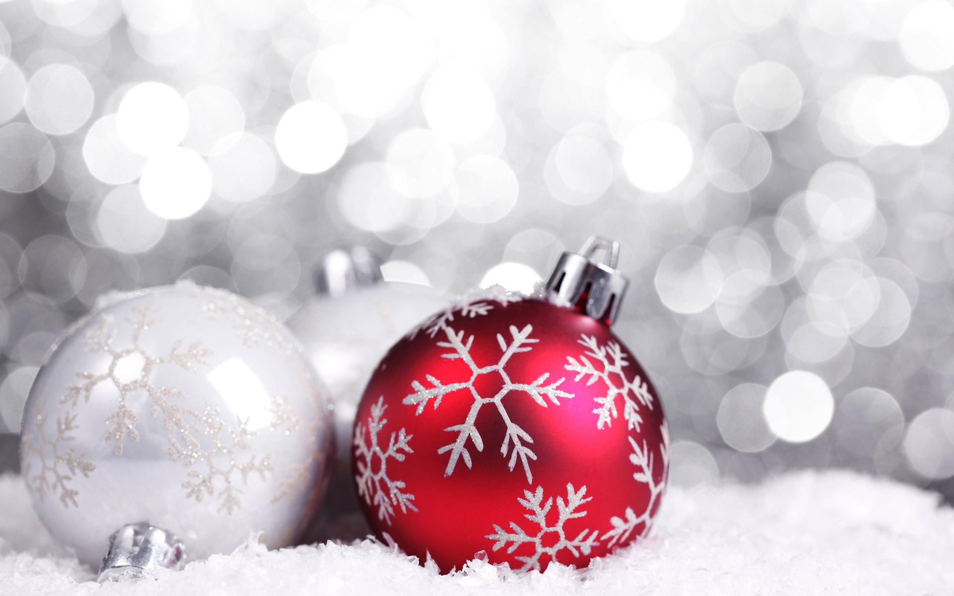 Christmas | HomeEarth